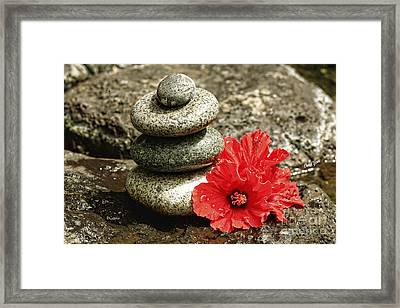 Serenity Framed Print by Cheryl Young