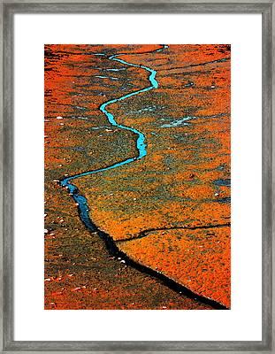 Serpentine Fen Framed Print by Barbara  White