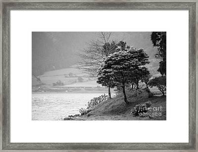 Sete Cidades Lakes Framed Print by Gaspar Avila