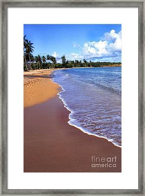 Seven Seas Beach Framed Print by Thomas R Fletcher