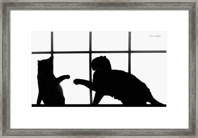 Shadow Boxing Framed Print by Karen Slagle