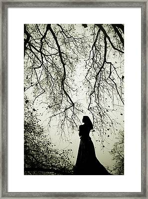 Shadow Fairy Framed Print by Cambion Art