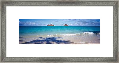 Shadow Of A Tree On The Beach, Lanikai Framed Print by Panoramic Images