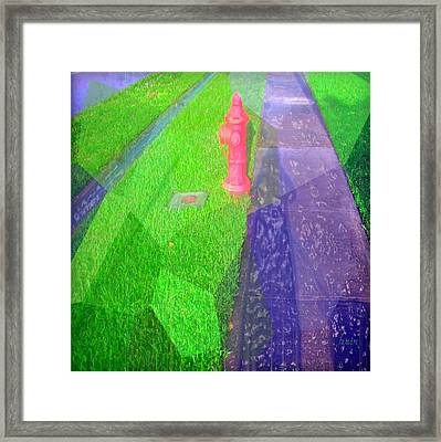 Shadow Of A Woman And Dog Framed Print by Fania Simon