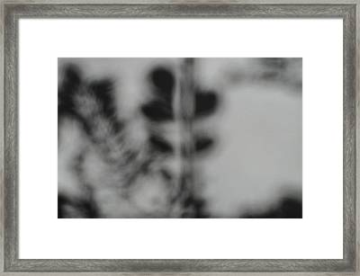 Shadow Of Autum 2 Framed Print by Peter  McIntosh
