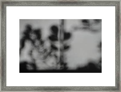 Shadow Of Autum Framed Print by Peter  McIntosh