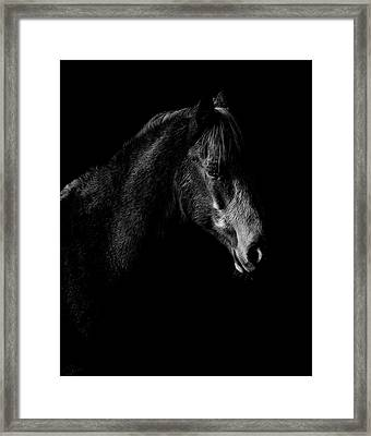 Shadow Framed Print by Paul Neville