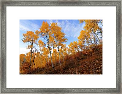 Shadowed Hill Framed Print by Chad Dutson