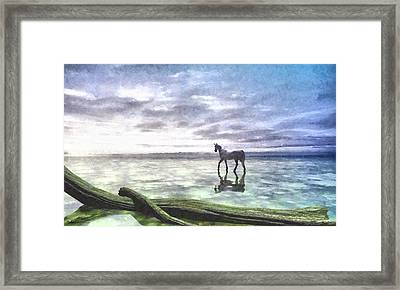 Shallows Painted Framed Print by Cynthia Decker