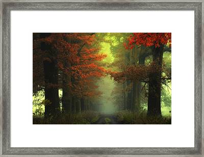 Shaman's Road On The Other Side Framed Print by Janek Sedlar