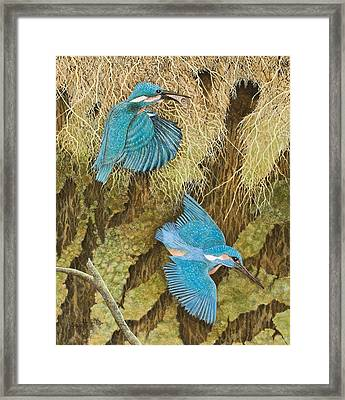 Sharing The Caring Framed Print by Pat Scott