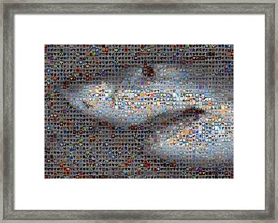 Shark Framed Print by Boy Sees Hearts
