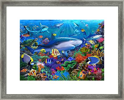 Shark Reef Framed Print by Gerald Newton