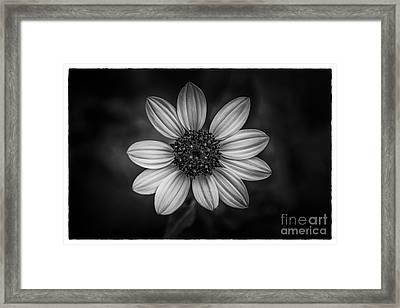 She Loves Me Framed Print by Marvin Spates