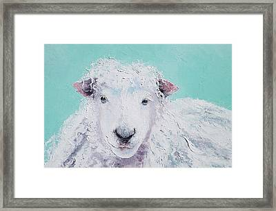 Sheep Art - Jeremiah Framed Print by Jan Matson