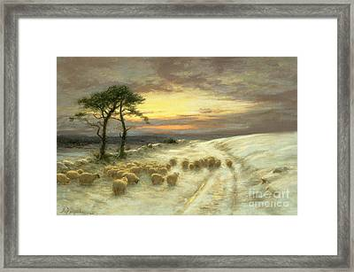 Sheep In The Snow Framed Print by Joseph Farquharson