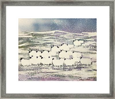 Sheep In Winter Framed Print by Suzi Kennett