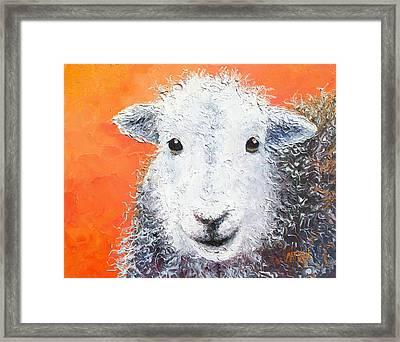 Sheep Painting On Orange Background Framed Print by Jan Matson
