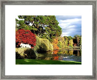 Sheffield Park Framed Print by Nicola Butt