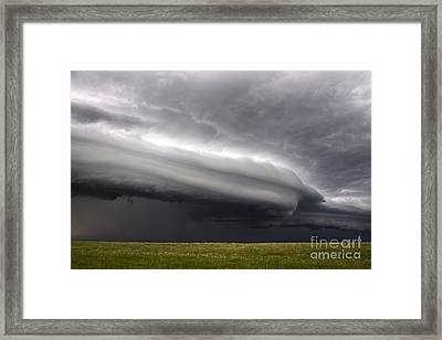 Shelfiness Framed Print by Francis Lavigne-Theriault