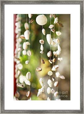 Shell Windchimes Framed Print by Kyle Rothenborg - Printscapes
