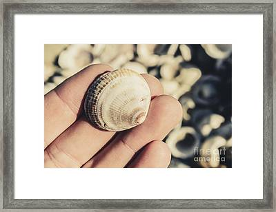 Shelly Point Beach Framed Print by Jorgo Photography - Wall Art Gallery