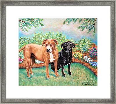 Shelter Rescued And Loved Framed Print by Patricia L Davidson
