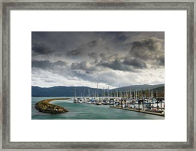 Sheltered Framed Print by Dan Mihai