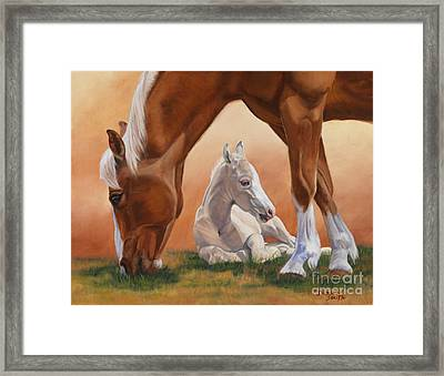Sheltered Framed Print by Danielle Smith