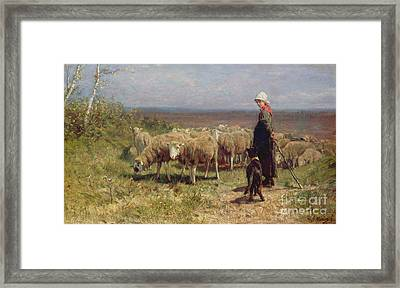 Shepherdess Framed Print by Anton Mauve