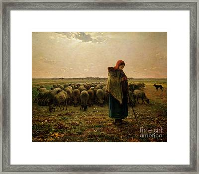Shepherdess With Her Flock Framed Print by Jean Francois Millet