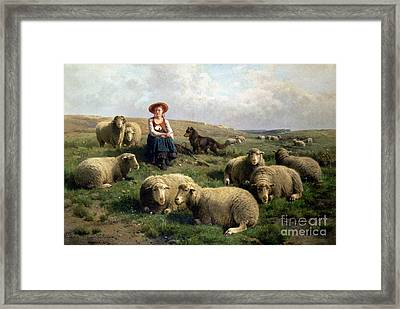 Shepherdess With Sheep In A Landscape Framed Print by C Leemputten and T Gerard