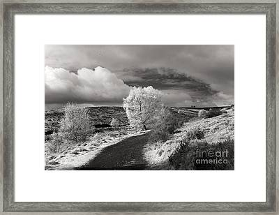 Sherbrook Valley Framed Print by Ron Evans