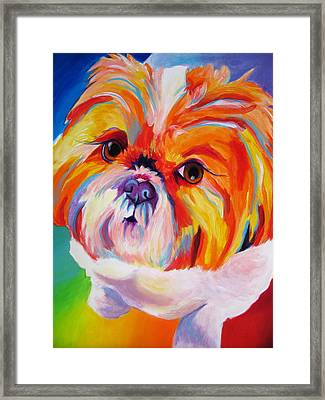 Shih Tzu - Divot Framed Print by Alicia VanNoy Call