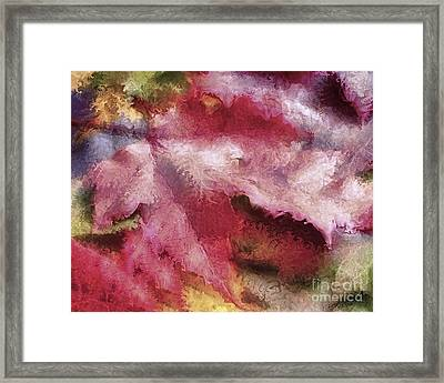 Shimmering Leaves Framed Print by Marilyn Sholin