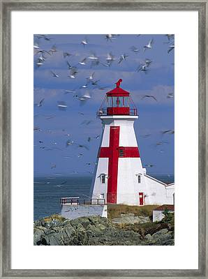 Ships Warning. Framed Print by Eggers   Photography