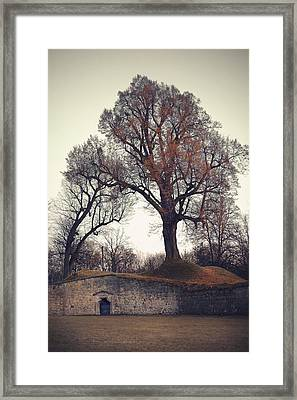 Shire Framed Print by Joanna Jankowska