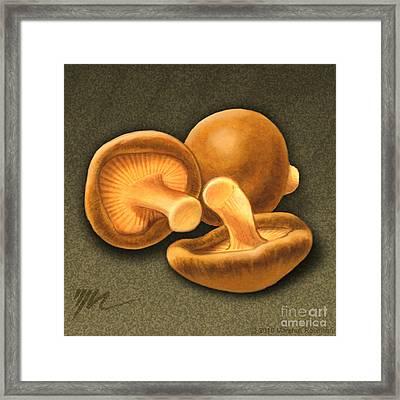 Shitake Mushrooms Framed Print by Marshall Robinson