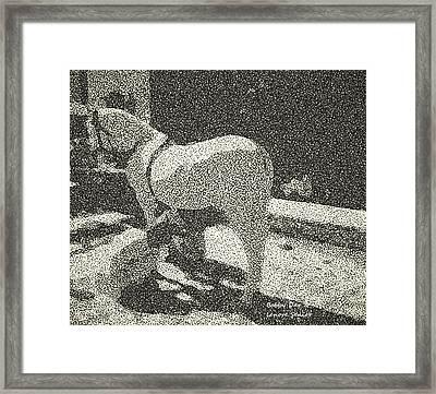 Shoeing The White Horse Framed Print by Lenore Senior and Bobby Dar