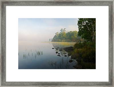 Shoreline Trees And Grasses Along Nina Framed Print by Panoramic Images