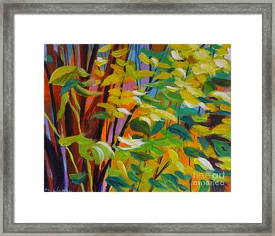 Shrubbery1 Framed Print by Melody Cleary