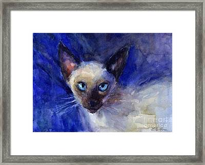 Siamese Cat  Framed Print by Svetlana Novikova