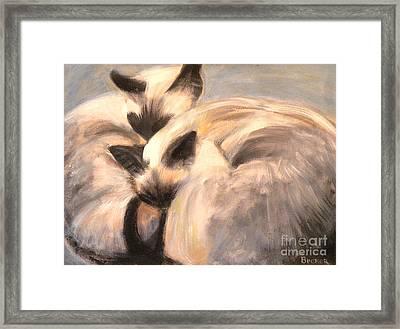Siamese Lovers Framed Print by Susan A Becker