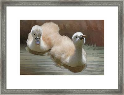 Siblings Framed Print by Donna Kennedy