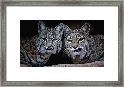 Side By Side Framed Print by Elaine Malott