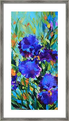 Signs Of Spring Blue Iris Framed Print by Nancy Medina