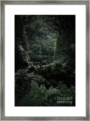 Silence Is Round Me   - Mokulehua Framed Print by Sharon Mau
