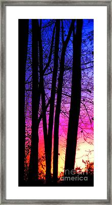 Silence Framed Print by Olivier Le Queinec