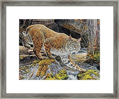 Silent Caution Framed Print by Steve Spencer