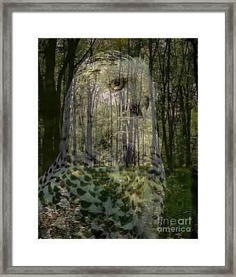 Silent Sentinel Framed Print by Priscilla Richardson